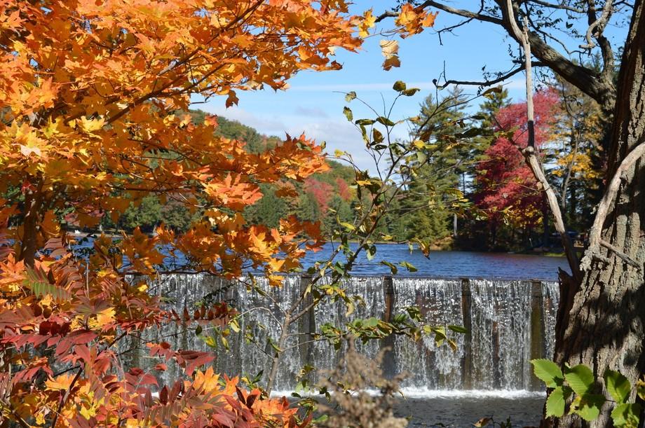 Fall & The Dam