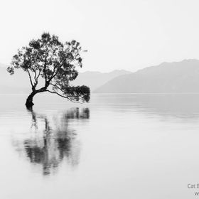 I've recently been going back through my image library and re-editing some of my shots. Here's a re-edit of the famous Wanaka tree whic...