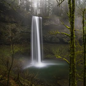 Lush green moss covers everything. The air is chilled and misty, occasionally cloaking a waterfall crowned by a precariously teetering downed tre...