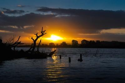 Sun Setting on the Murray