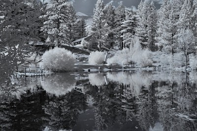 Marilyn Pond In Infrared