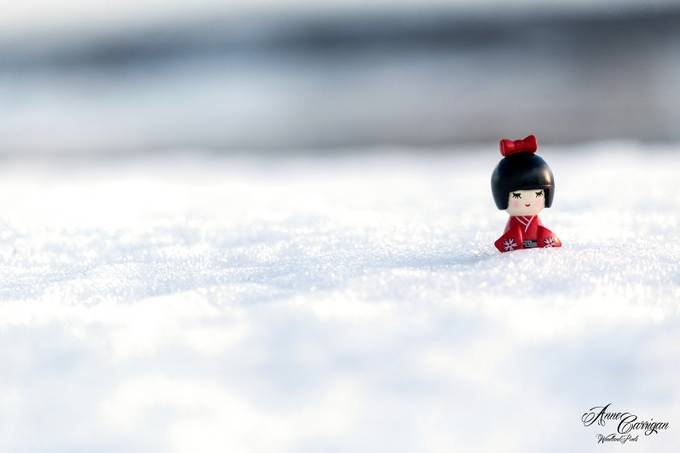Little Red by WoodlandPixels - We Love The Winter Photo Contest