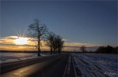 Highway 303