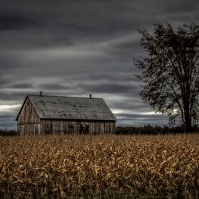Old Barn in Eastern Ontario