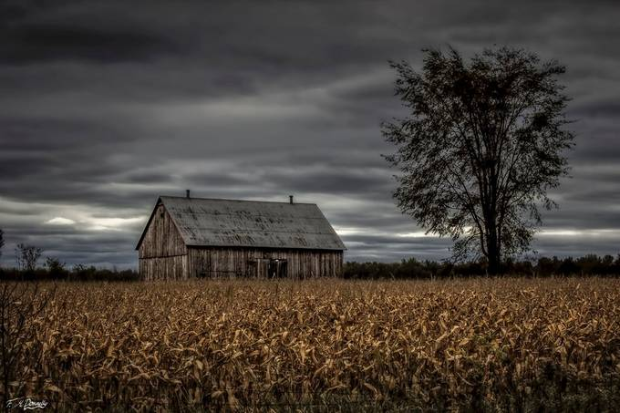 Old Barn in Eastern Ontario by FionaDonnelly - Farms And Barns Photo Contest