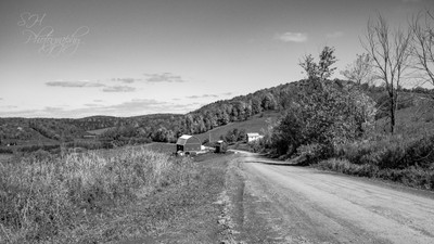 Dirt Road Farm