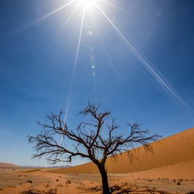 Sun Flare over the Namib Desert