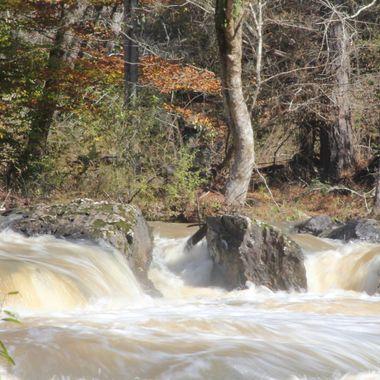 Sweetwater Creek SP