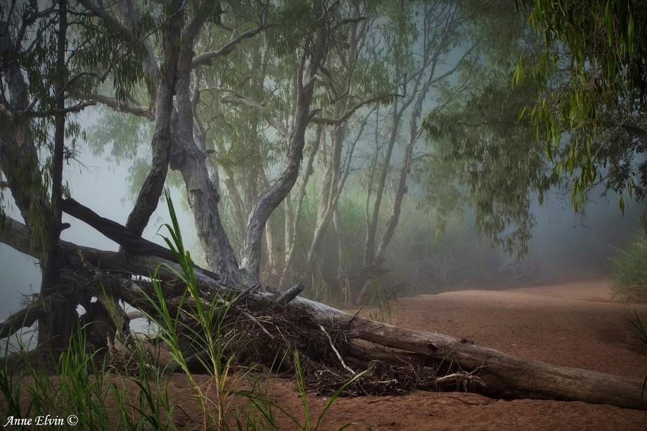 Major's Creek