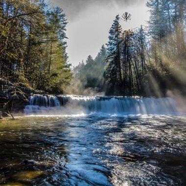 Dupont State Forest, North Carolina