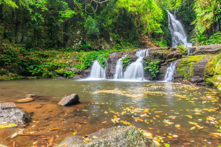 One of the most spectacular falls inside the Lamington National Park (Green Mountain Section)