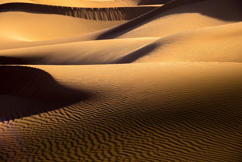 The sand dunes near Zagora in Morocco offer splendid views, especially when the sun is low castin...