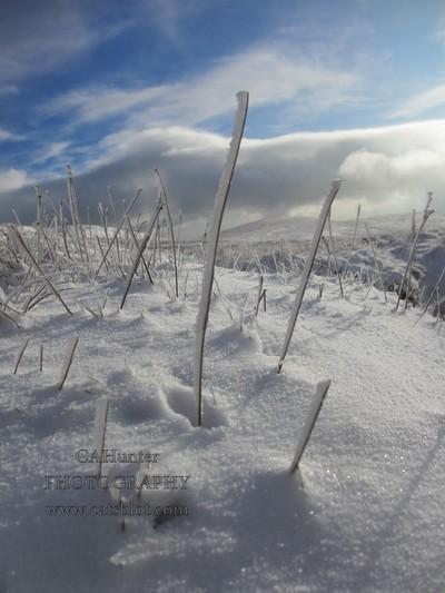 Ingleborough in the snow