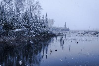 Snowfall at Angell Pool
