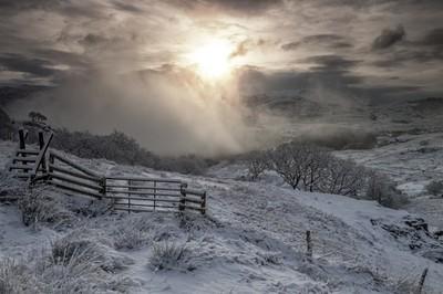 Watkins Path Winter Sunshine
