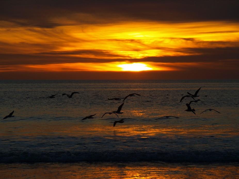 Sunset at Encinitas Beach in San Diego, California.