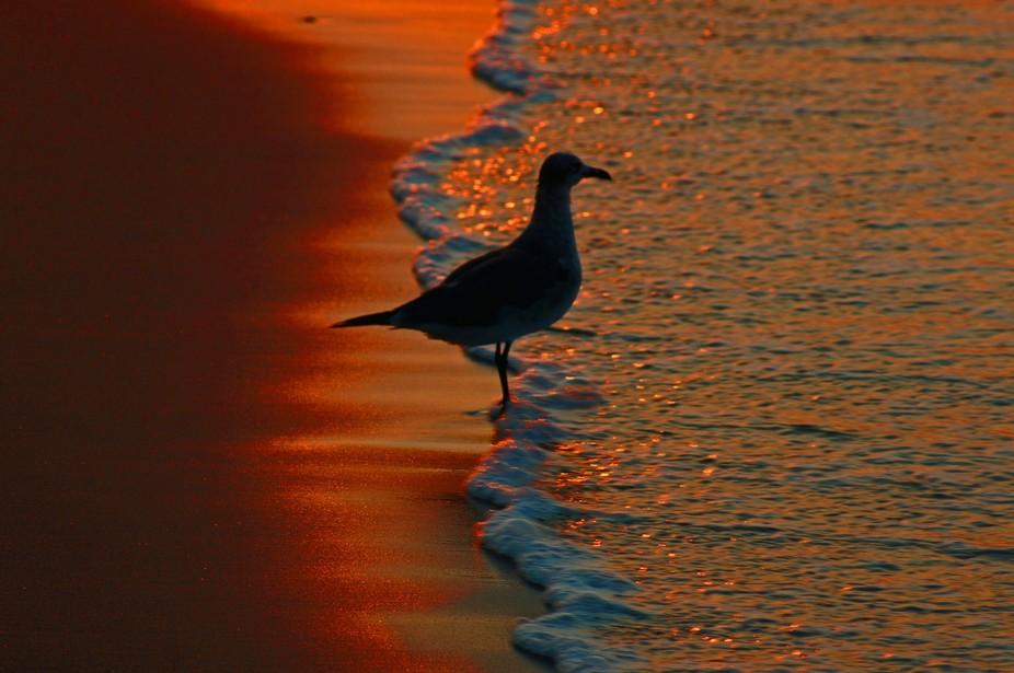 Sunrise on Emerald Isle, NC