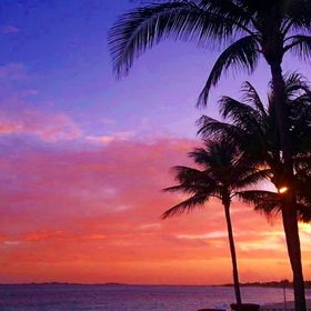 This is an edited photo from the Bahamas, of the setting sun. I thought the dark palm trees would look good silhouetted against the setting sun a...
