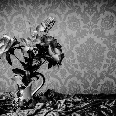 Strong black and white still life image with bold tones.