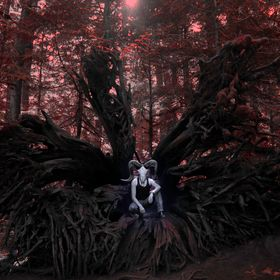Model: Philip Pacemaker | DANGEROUS DAYS Credits: © Selenelion Visual Art (MMXV)  Note: 'Cathedral Grove is a rare and endangered remnant o...