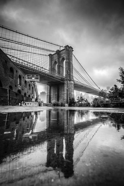 Reflections in Brooklyn