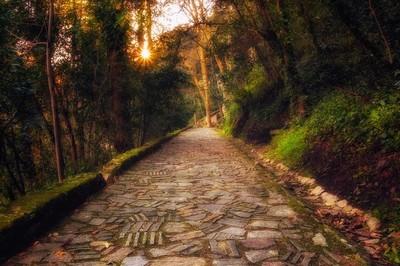 The magic trail, Sintra - Portugal