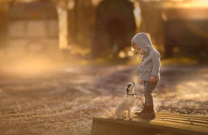 Early Farm Mornings by wonderandwhimsy - Children and Animals Photo Contest