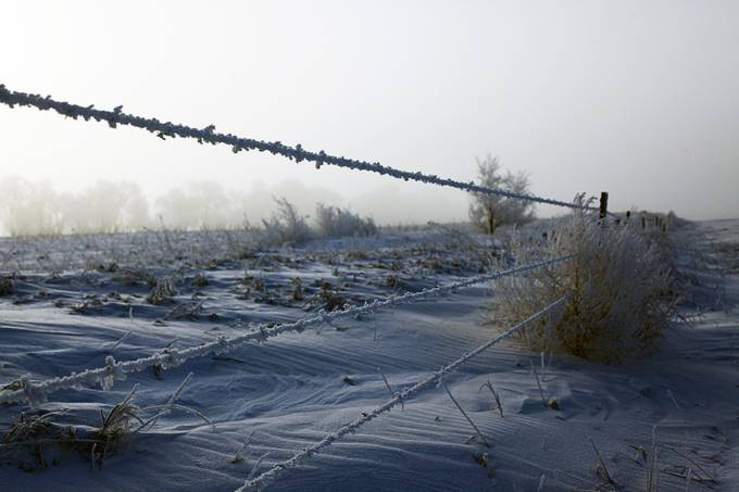 Frosty mornings of North Dakota