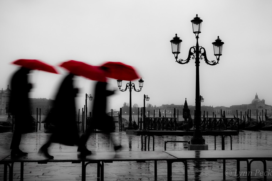 Taken on a very wet morning in Venice with a high tide warning hence the board walks.