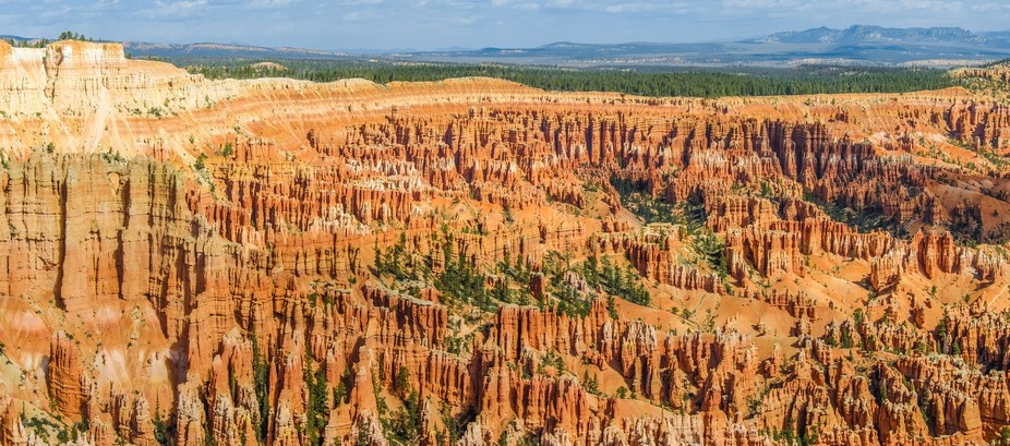 Hoodoos at Bryce Canyon National Park, Utah.