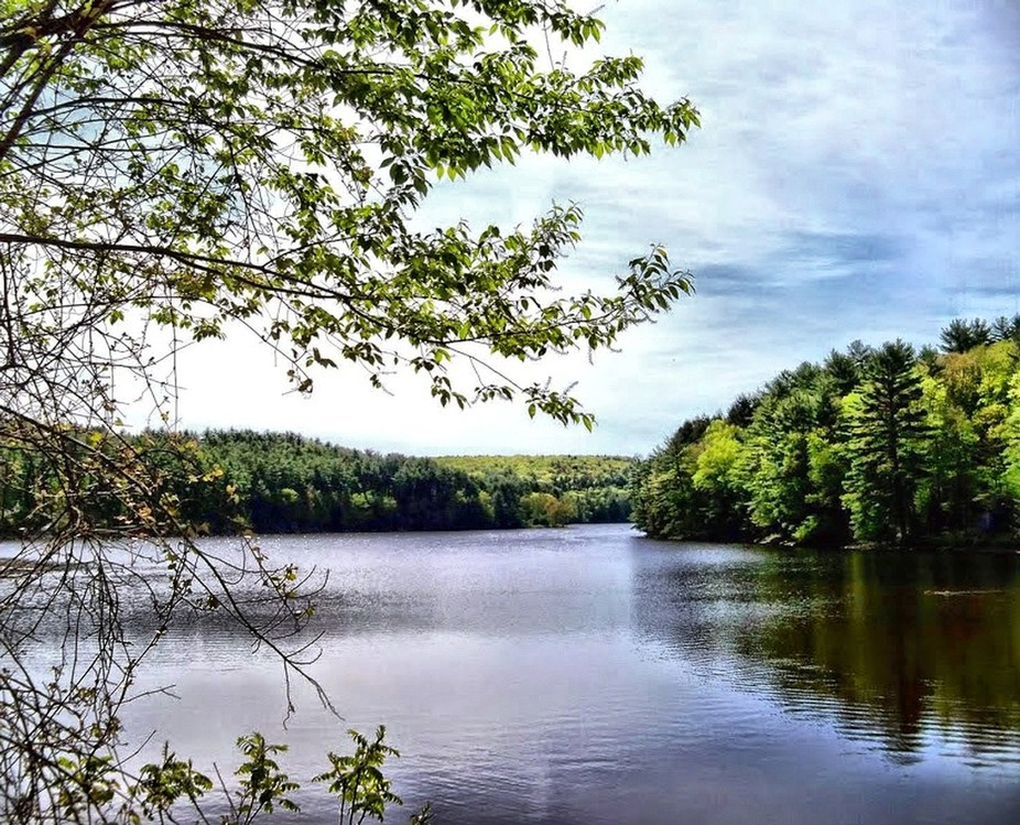 mongaup valley Browse mongaup valley ny real estate listings to find homes for sale, condos, commercial property, and other mongaup valley properties.