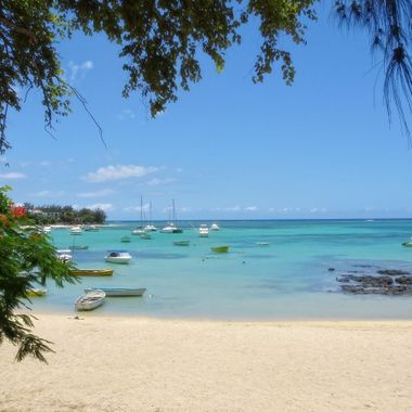 The Mauritius Collection - Bain Boeuf (1)