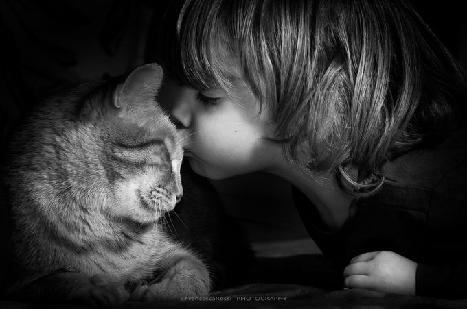 the kiss by francescarossi - Children and Animals Photo Contest