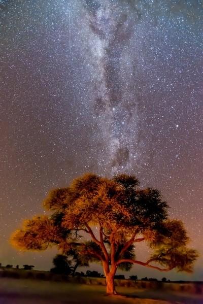 Milky Way in the African Sky