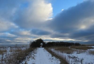 Path i North Sealand