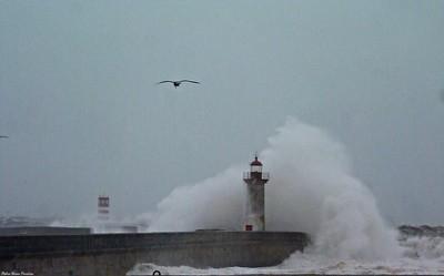 Felgueiras Lighthouse holding on