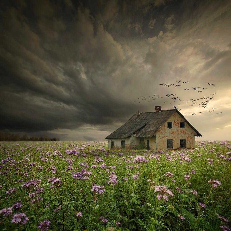 abandoned homestead by zenaj - Farms And Barns Photo Contest