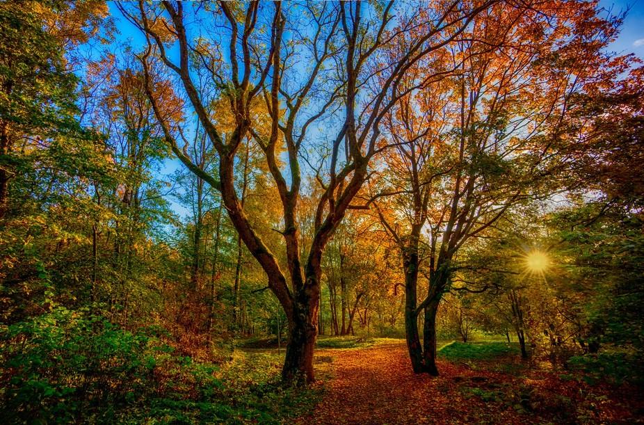 Landscape photo from Mölndal, Sweden