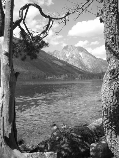 Grand Tetons _Jenny Lake_4541
