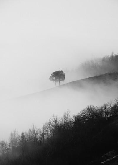 Fog in Sarajevo