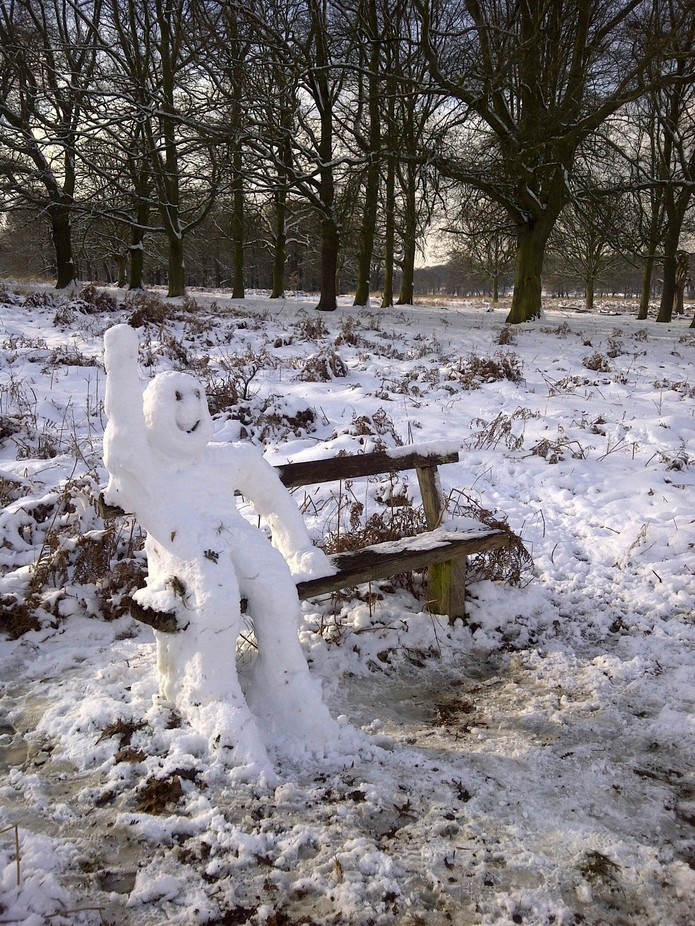 A heavy snowfall overnight in Richmond park, and the next morning the snowman appeared.