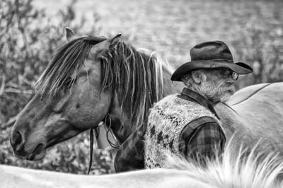 Cowboy NWT