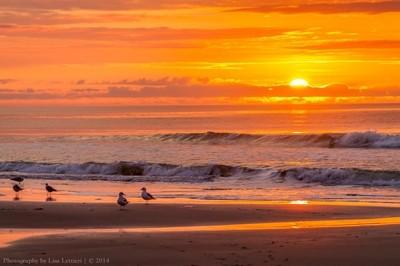 Good Morning Myrtle Beach