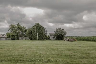 The Vine Barn.