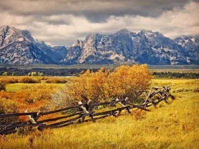 Old Log Rail Fence
