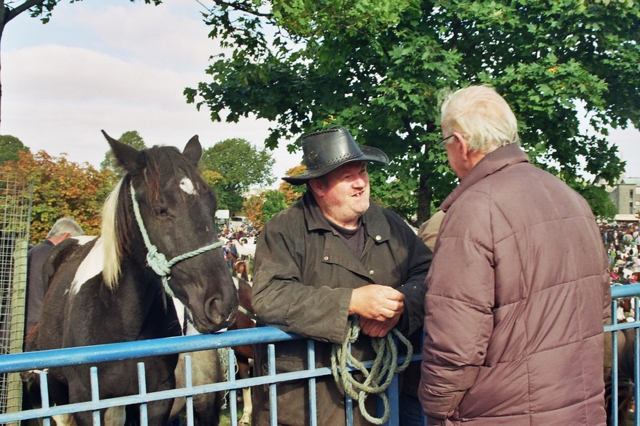 Each year people come from all over Ireland to Ballinasloe Horse fair. Even if you never intended...