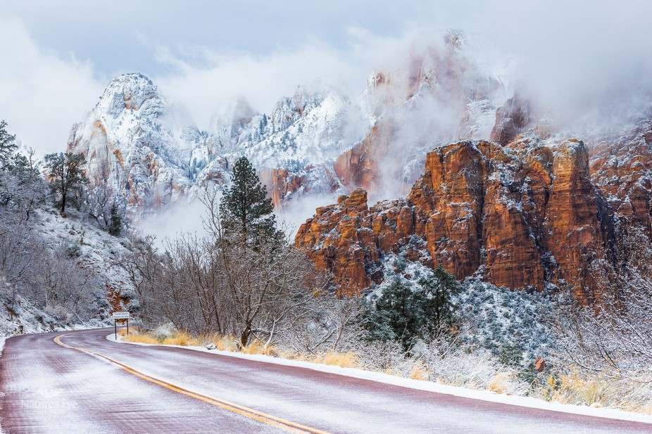 "I woke up to 6"" of fresh snow so I drove a few miles up to Zion National Park in hopes o..."