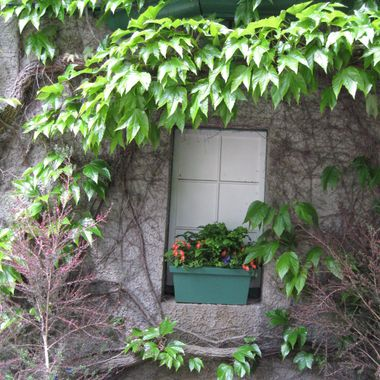 Hidden window at Butchard Gardens in Victoria - June 2010