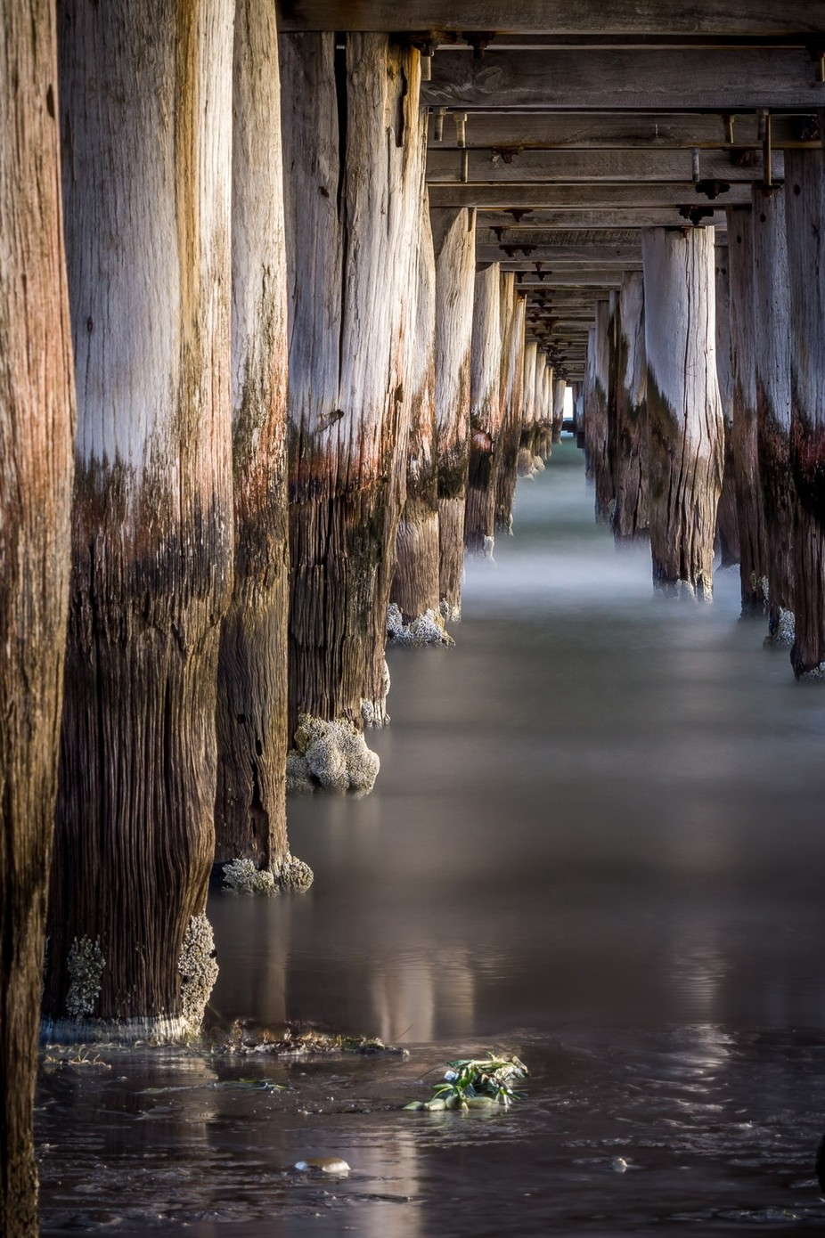 Under the boardwalk by AdamElliott65 - The View Under The Pier Photo Contest