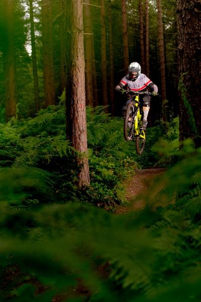 Sherwood-Pines-Biking-Photography-2